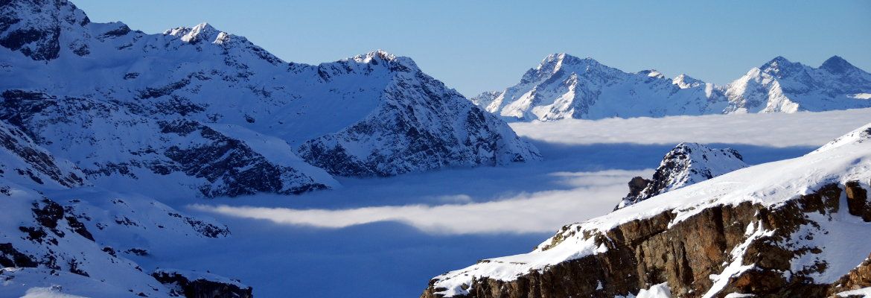 alt mont split ski
